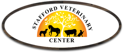 Stafford Veterinary Center in Stafford Springs CT