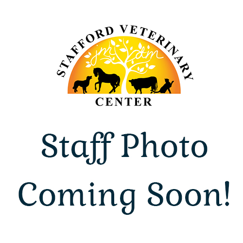 Stafford Veterinary Center Staff